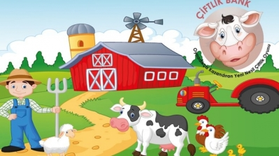 Farm Bank player-investors struggle to 'moo-ve' on as game founder flees Turkey