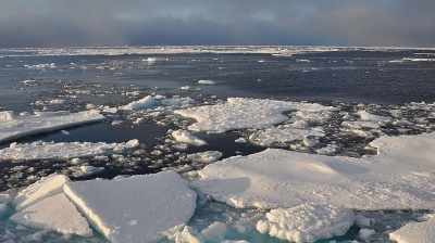 Putin to decide on $40bn tax breaks for Arctic oil