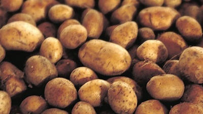 Kosovo bans import of potatoes and honey from North Macedonia