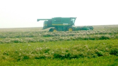 Kazakh government aims to attract €7.9bn of investments in agriculture sector