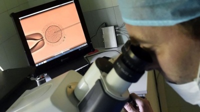 Hungary takes over fertility clinics to offer free IVF services in bid to halt population decline