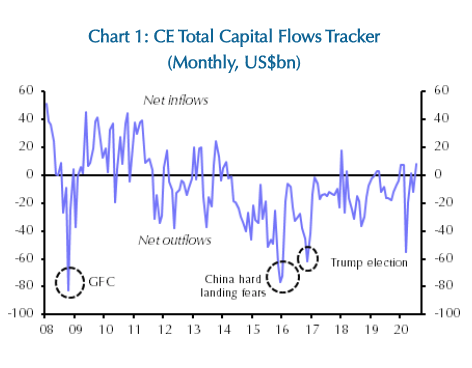 esb international investments and capital flows